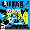008Frankensteins-Nichte-Erbin-des-Wahnsinns-5-Vinyl