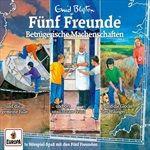 0383erBoxBetruegerische-Machenschaften-Folgen-1-65-CD