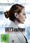 Greys-Anatomy-17-Staffel-38-DVD-D-E